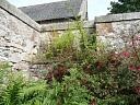 Graveyard, St Duthus' Church, Tain   © Highland Buildings Preservation Trust