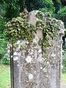 Lochcarron Kirkton, graveyard   © Highland Buildings Preservation Trust