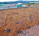 Photo overlooking the scattered black pits, Features 12-26, in the gravel grading compound; the dark suboval patch in centre of photo is Feature 27. Facing N.  by MKP  © Ross and Cromarty Archaeological Services
