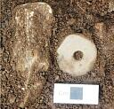 Spindle whorl in situ, in Trench 1  by AOC Archaeology  © AOC Archaeology