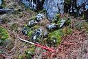 Survey Photos  by Mary Peteranna  © AOC Archaeology Group
