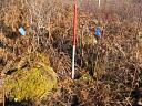 Hut circle An Torr 5 (AMC108): from W showing max height  by Anne MacInnes  © Anne MacInnes