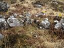 Hut circle Mullach nan Cadhaichean (JAN032): looking NE at HC walling  by Anne MacInnes  © Anne MacInnes